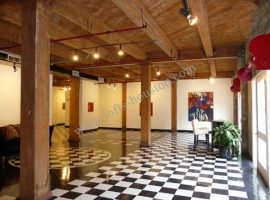 Dakota_Lofts_Lofts-Houston[3]
