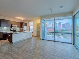 Pearl_Midtown_Lofts-Houston[13]