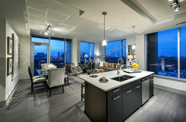 Apartments Near Kirby Drive Houston Tx